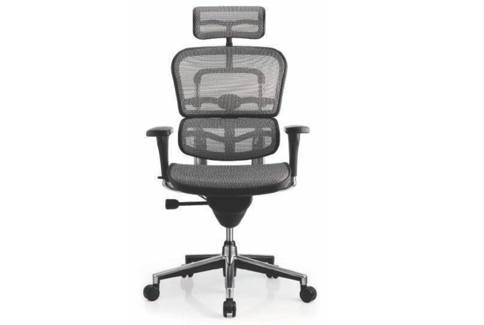 Ergohuman Elite Office Chair