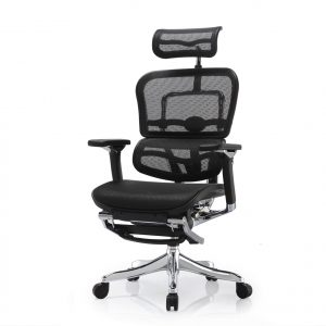 Ergohuman Elite V2 Office Chair