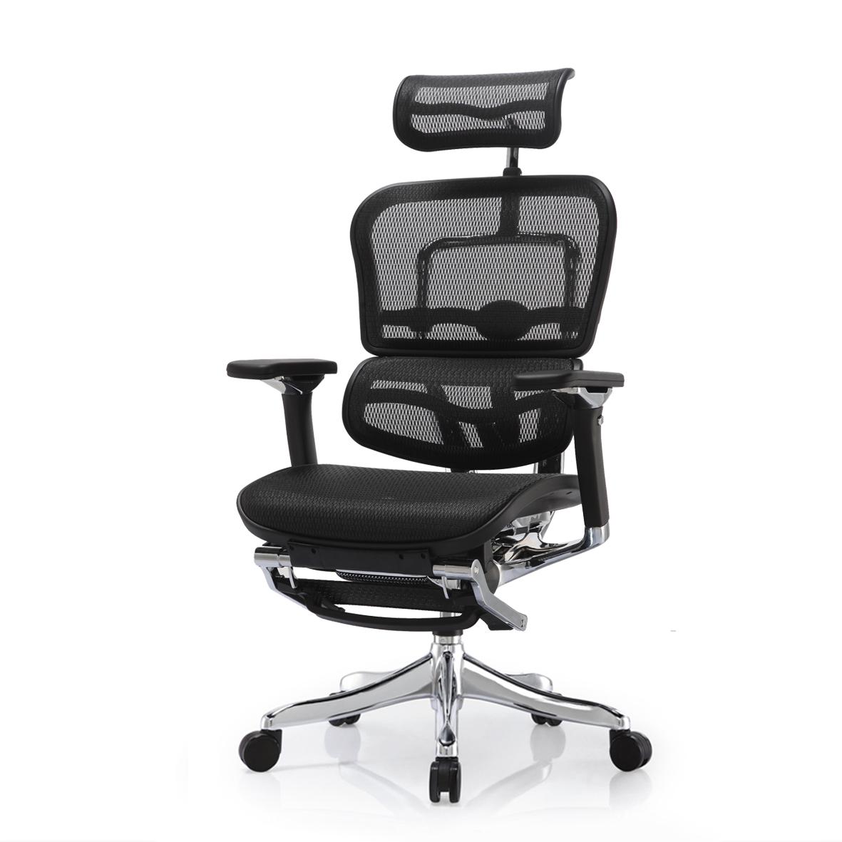 Ergohuman Elite V2 Office Chair