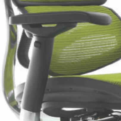Ergohuman Office Chair